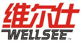 Wuhan Wellsee New Energy Industry Co., Ltd.